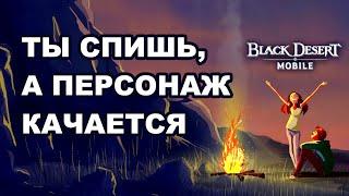 BDM: Как качаться всю ночь в Black Desert Mobile