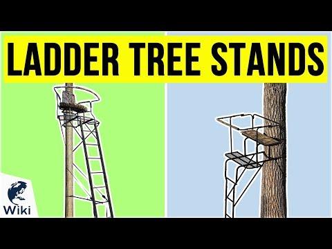 10 Best Ladder Tree Stands 2020