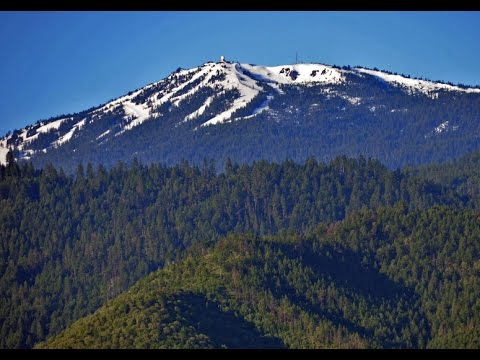 Old Hermit Tells About His Scary Bigfoot Encounter Near California-Oregon Border! - PacWest Bigfoot