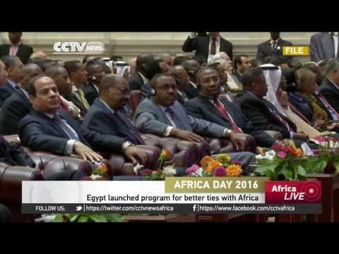 Egypt launches African support program