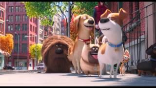 Тайная жизнь домашних животных (2016) - Трейлер #3 [HD]