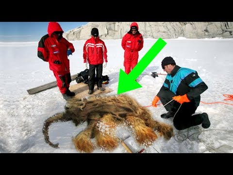 Tim Palmer - How Close Are We To Resurrecting Dead Species?