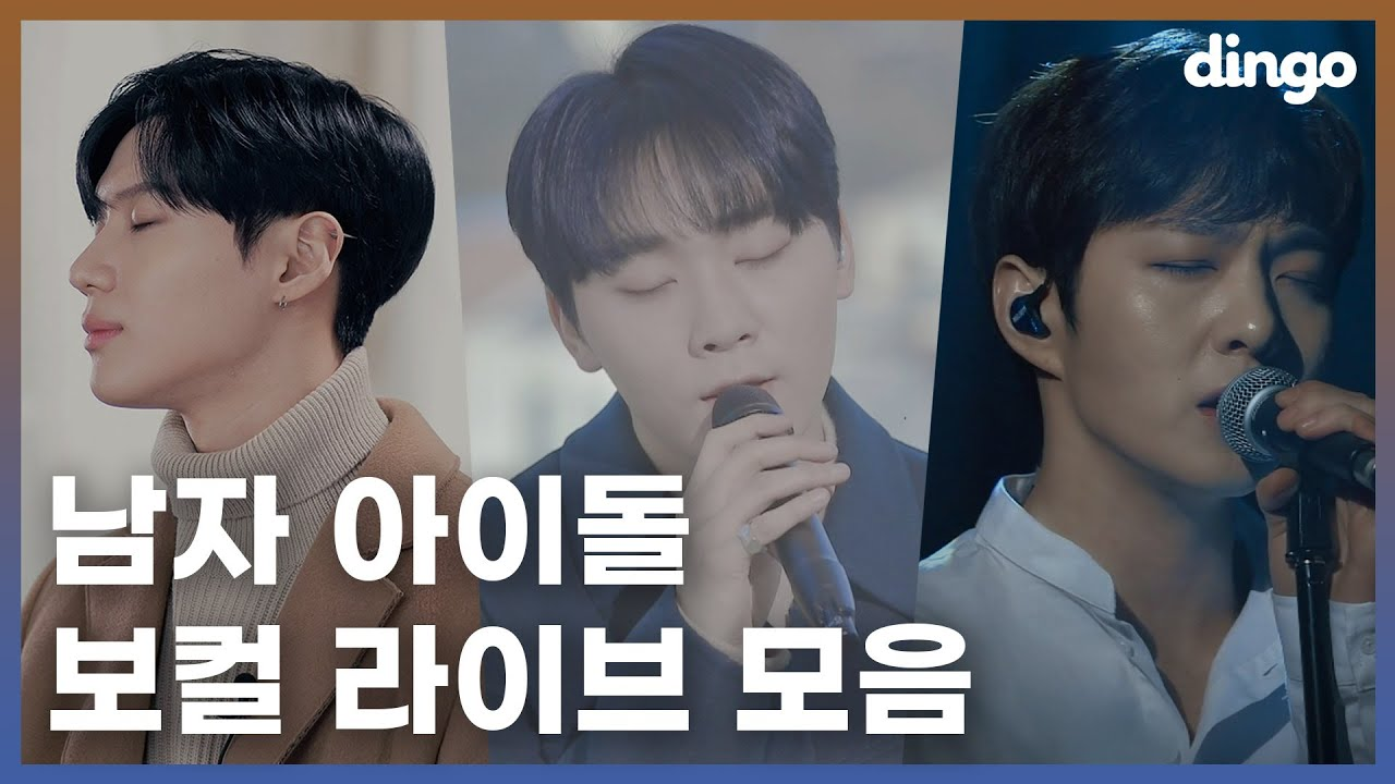 ✨dingo pick!✨ K-POP 남자 솔로 세로라이브 모음!ㅣMale Solo Artist LIVE CompilationㅣTAEMIN,SEUNGKWANㅣCHANGSUBㅣRAVI