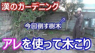 【DIY】漢のガーデニング? 定番のアレを使って木こりになってみる( ´∀`)