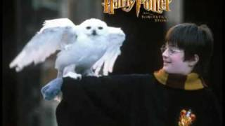 Harry Potter - Hedwig