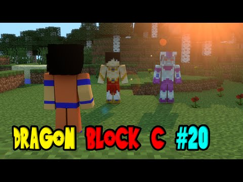 DRAGON BLOCK C