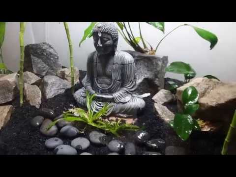 Zen Garden Build  part 1