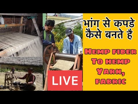 Hemp products, fiber, yarn, fabric, clothes | hemp farming in uttarakhand गाँजे, भांग की खेती, बीज