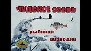 Чудское озеро рыбалка разведка проверка ледовой обстановки