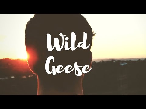 Mary Oliver - Wild Geese | Collaboration with Live Learn Evolve
