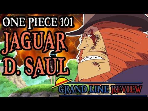 Jaguar D. Saul Explained (One Piece 101)