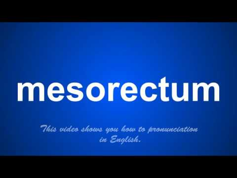 the correct pronunciation of mesothorax in English.