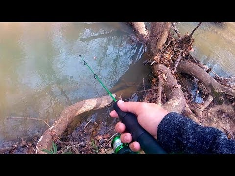 Tiny Creek Fishing (I've Never Done This)