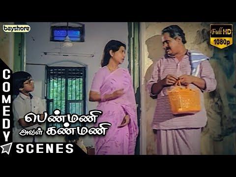 Penmani Aval Kanmani - Comedy Scene | Prathap Pothen | Seetha | Visu