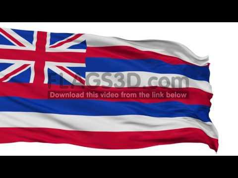 Isolated Waving National Flag of Hawaii