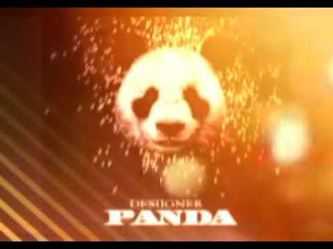 Designer-Panda 2018