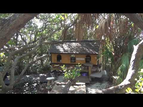 TNVR Feral Cat Housing In Florida
