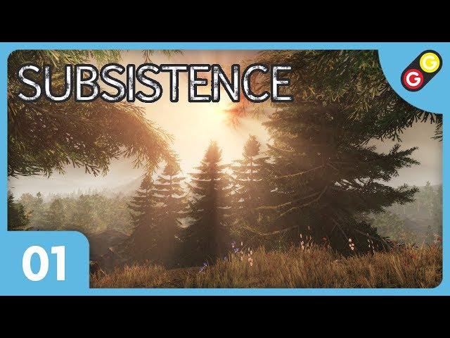 Subsistence #01 On découvre le jeu ! [FR]