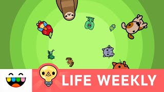 Whaaat?! Can You Flush Pets in Toca Life: City?   Life Weekly   @TocaBoca