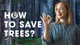 How mites can save trees from bark beetle outbreaks