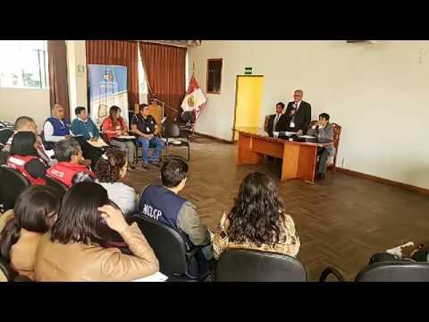 DRE Apurímac 2020 - Conformación Del Comité E Instalación Mesa Técnica Regional Del Buen Año Escolar