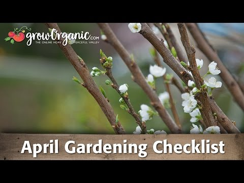 April Gardening Checklist: 19 Tips to Keep Your Organic Garden Healthy in April