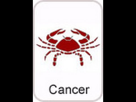 Cancer career  Cancer Suitable Profession   Cancer career Horoscope   Suitable industry for cancer