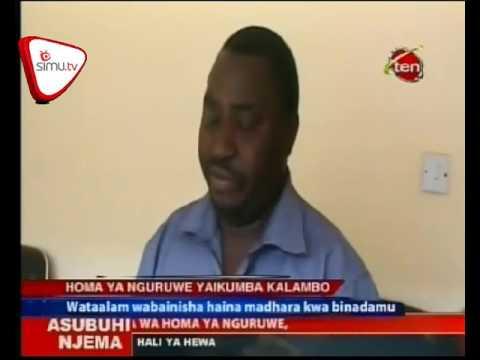 Kalambo Yakumbwa Na Homa Ya Nguruwe