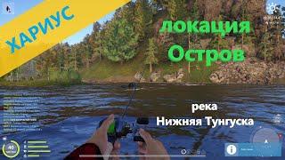 Русская рыбалка 4 - река Нижняя Тунгуска - Хариус на вертушку и поппер