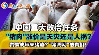"""猪肉成为中国重大政治任务! 猪肉到底出了什么问题?猪肉涨价到底是天灾还是人祸?贸易战是根本原因?""""猪周期""""的真相!焦点深一度Sep 24,2019"""