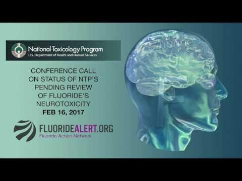 NTP Update on Fluoride Neurotoxicity