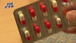 濫用抗生素 助長超級細菌變異