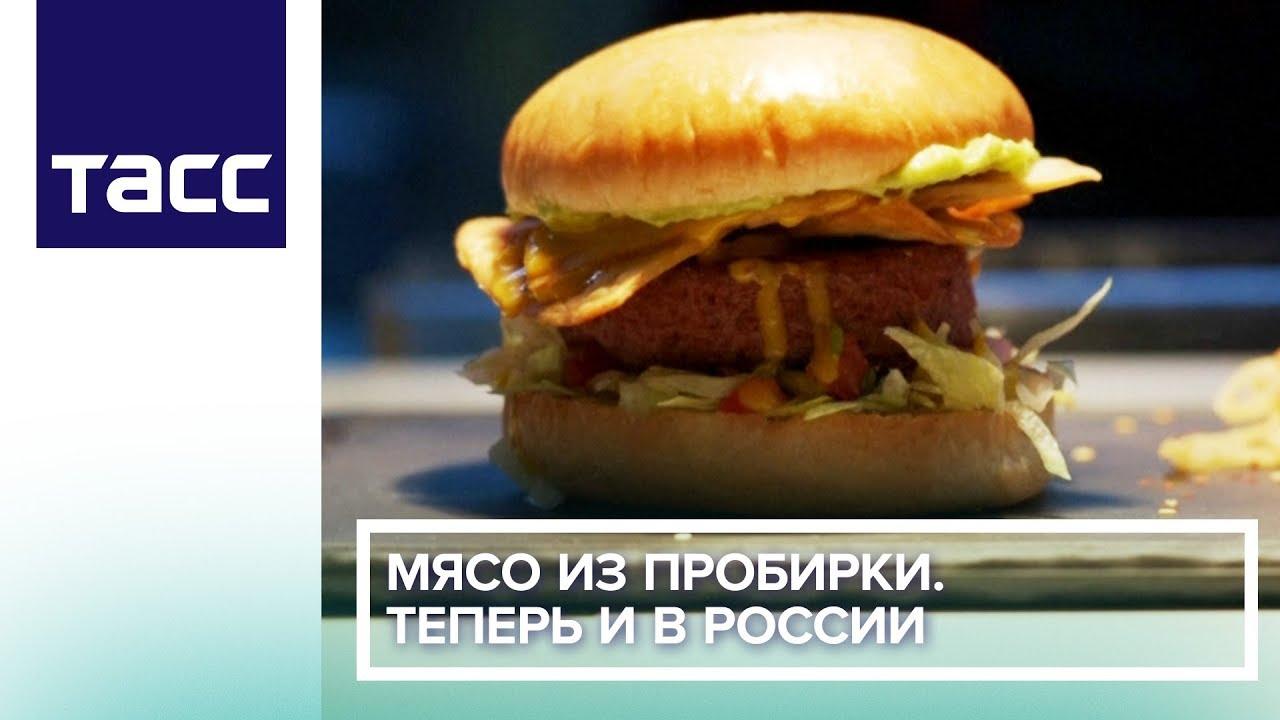 Российские ученые впервые произвели мясо в лаборатории
