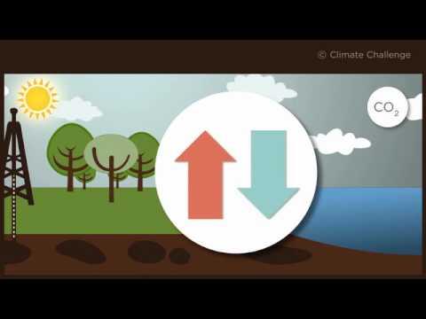 hqdefault - La vie et le climat