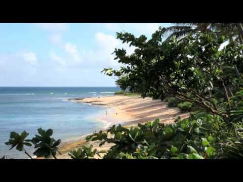 Sunset Suratt Surf School North Shore Oahu Hawaii YouTube