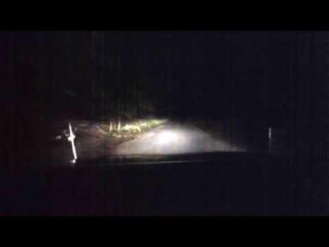 Hummel Park Evidence Part 2