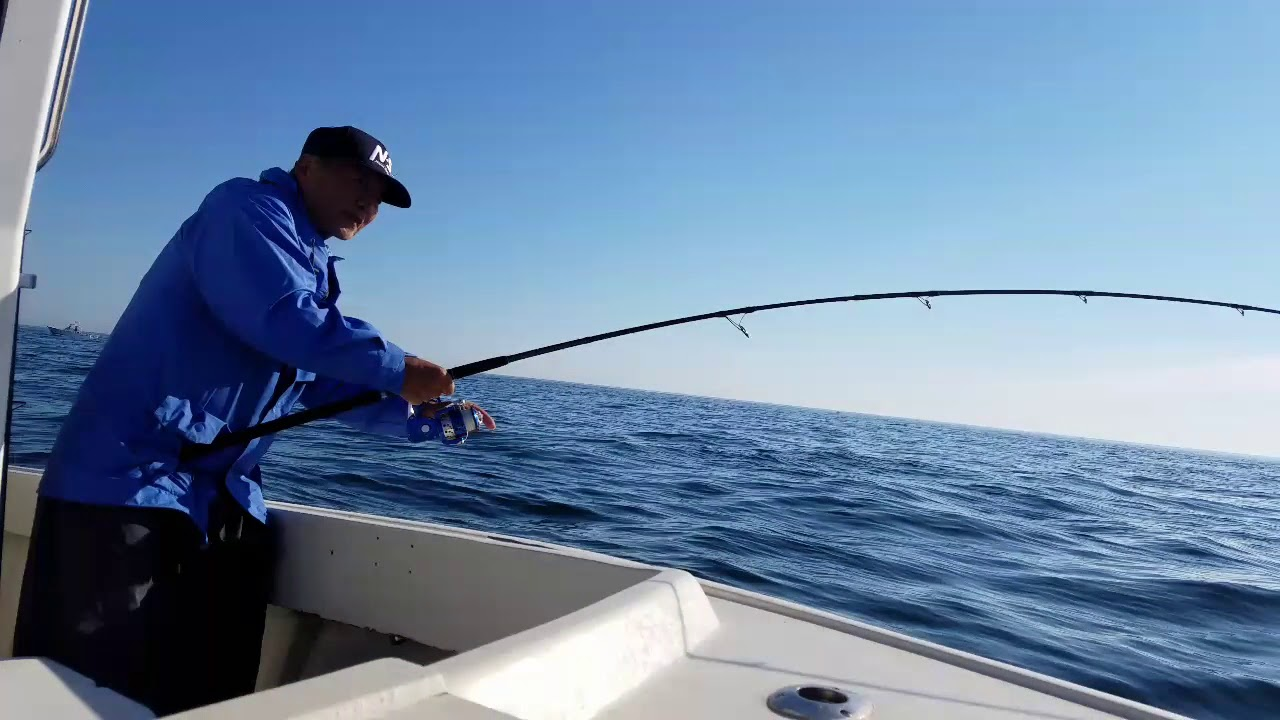 "9'6"" prototype Black Hole rod in action for striper"