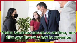 Pedro Sánchez nos m.ea encima, nos dice que llueve y nos lo creemos