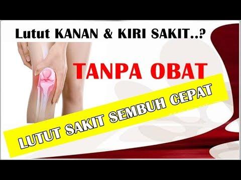 Jenis2 penyakit lutut