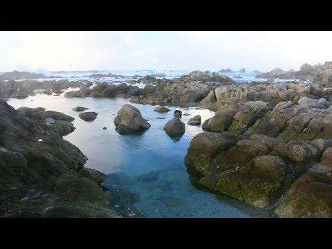 Stormy day and Big Waves on Pacific Coast Highway 1 near Big SUR California - Relaxing music