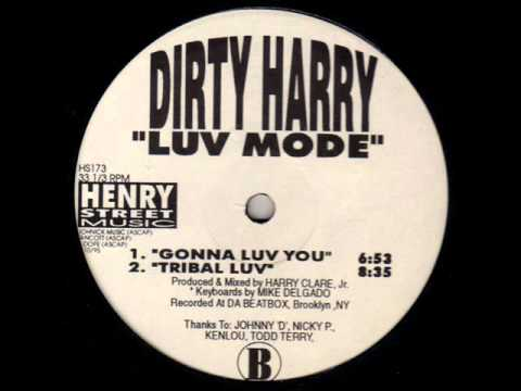 Dirty Harry -- Stay Forever
