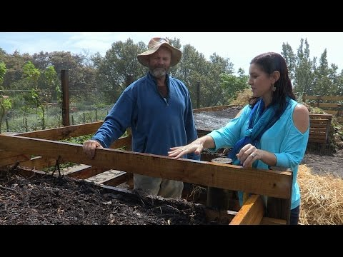 How to Create Rich Organic Compost
