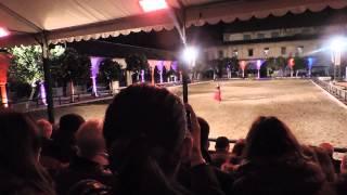 Caballo baila con flamenca- COrdoba