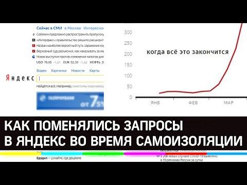 Как изменились запросы в Яндекс в период самоизоляции - что ищут?