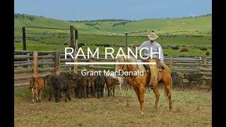 Grant MacDonald - Ram Ranch [Lyrics]
