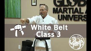 vuclip Shotokan Karate Beginner Follow Along Training Class - 9th Kyu White Belt -  Class 3