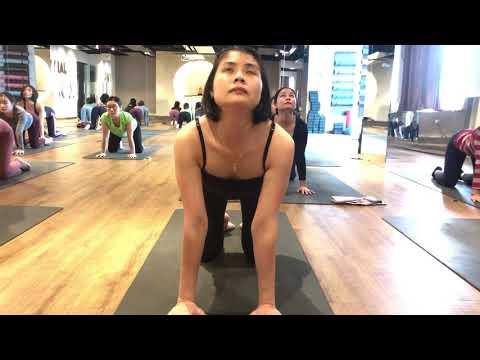 25 Minutes Sitting yoga flow / Master Ajay/ Jai yoga