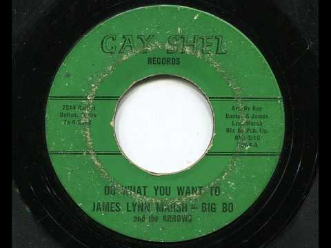 JAMES LYNN MARSH/BIG BO and the ARROWS - Do what you want to - GAY-SHEL