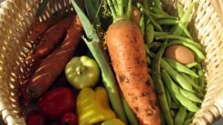 Healthy Food Financing