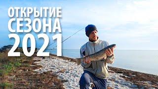 Ловля пеленгаса 2021 Открытие сезона Морская рыбалка